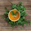 deananddavid Mango Möhre Soup Box