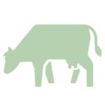 tierische-produkte-deananddavi
